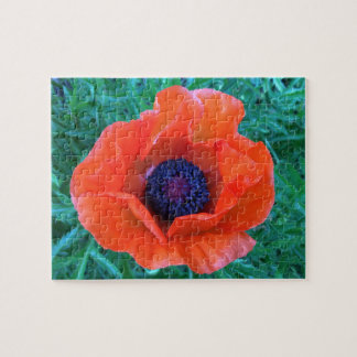 POPPY Oriental Red Orange --- Jigsaw Puzzle