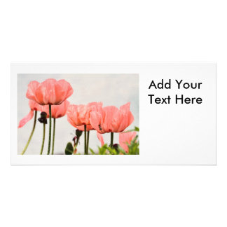 Poppy Picture Photo Card Template