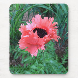"""POPPY """"Pink Ruffles"""" --- Mouse Pad"""