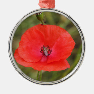 poppy Silver-Colored round decoration