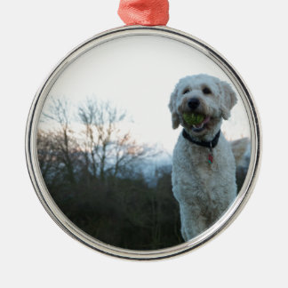 Poppy the labradoodle dog Silver-Colored round decoration