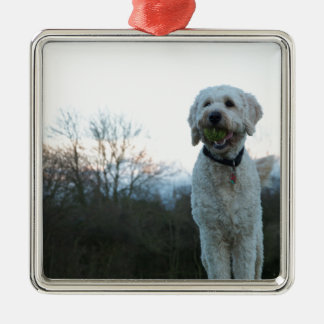 Poppy the labradoodle dog Silver-Colored square decoration