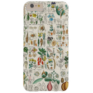 Poppy, Violet Plant Classifications Barely There iPhone 6 Plus Case