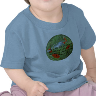 poppyball, ...grow in the grace and knowledge o... tee shirt
