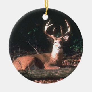 Popular Whitetailed Deer Buck Gift Round Ceramic Decoration