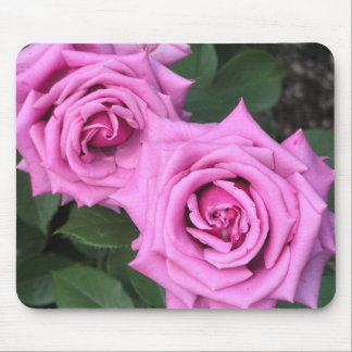 Popularity kind of rose, mouse pad of purple cloud