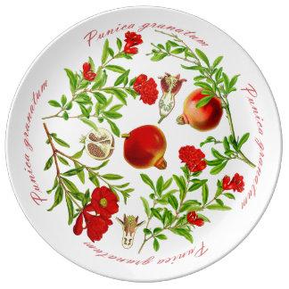 Porcelain Platter Plate