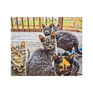 Porch cats on canvas canvas print