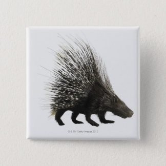 Porcupine 15 Cm Square Badge