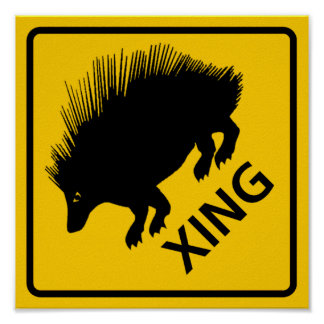 Porcupine Crossing Highway Sign Poster