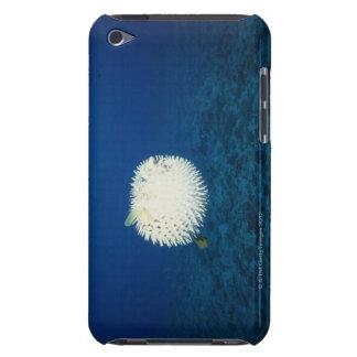 Porcupine Fish iPod Touch Case