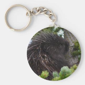 porcupine key chain