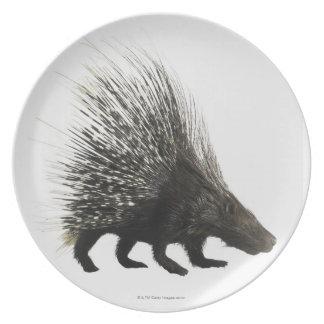 Porcupine Plate