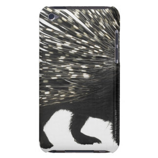 Porcupine quills barely there iPod cover