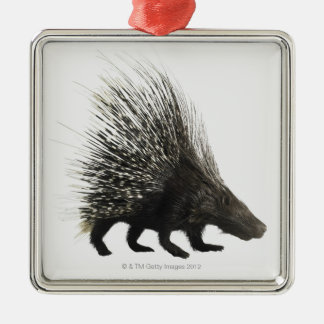 Porcupine Silver-Colored Square Decoration