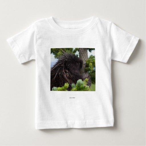 Porcupine Tshirts