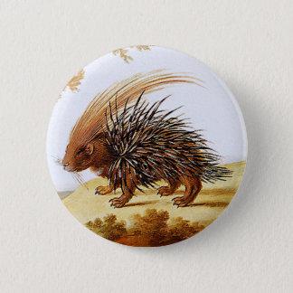 Porcupine - Vintage Porcupine Painting (detail) 6 Cm Round Badge