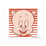 Porky Pig Expressive Expressive Expressive 23 Post Cards