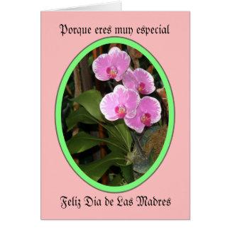 Porque eres muy especial feliz dia de las madres greeting card