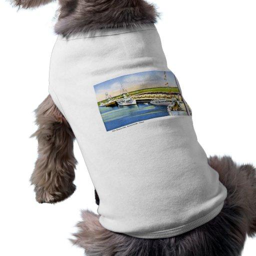 Port Brownsville, Brownsville, Texas Dog Clothes