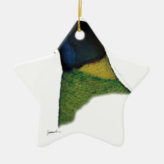 port lincoln parrot, tony fernandes christmas ornament