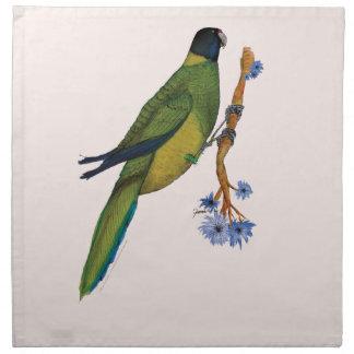 port lincoln parrot, tony fernandes napkin
