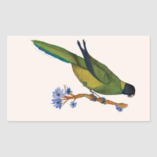 port lincoln parrot, tony fernandes rectangular sticker