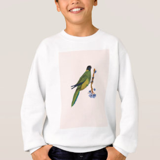 port lincoln parrot, tony fernandes sweatshirt