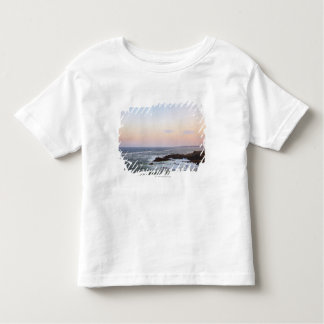 Portland Head and view to Atlantic Ocean Toddler T-Shirt