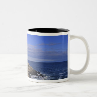 Portland Head Light Lighthouse Maine Two-Tone Coffee Mug