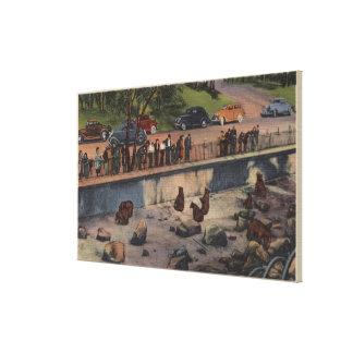 Portland, ORBear Dens in Washington Park Canvas Print