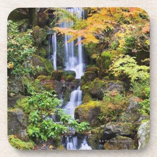 Portland, Oregon Coaster