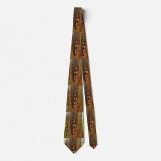 Portland Tree Tie