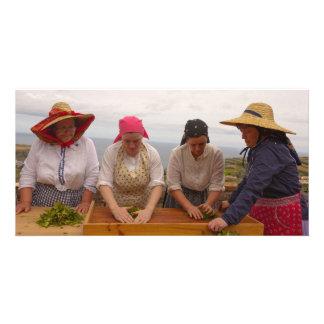 Porto Formoso tea gardens Photo Greeting Card