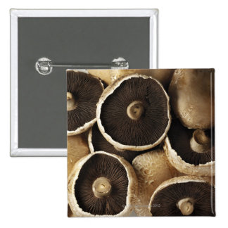 Portobello Mushrooms on White Background 15 Cm Square Badge