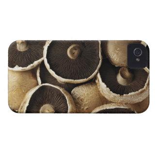 Portobello Mushrooms on White Background Case-Mate iPhone 4 Case