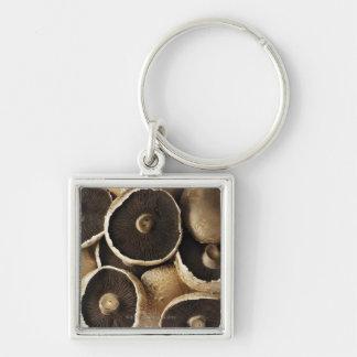 Portobello Mushrooms on White Background Key Ring