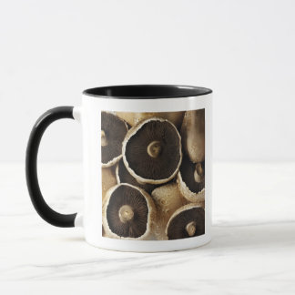 Portobello Mushrooms on White Background Mug