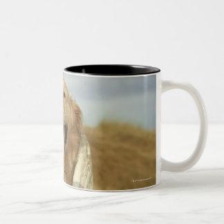 Portrait dog on beach under quilt. Fall Two-Tone Coffee Mug