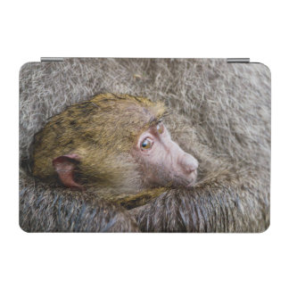 Portrait Of A Baby Olive Baboon (Papio Anubis) iPad Mini Cover