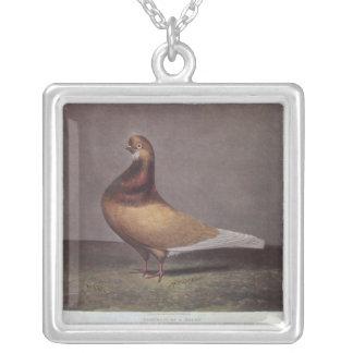 Portrait of a Beard Pigeon Square Pendant Necklace