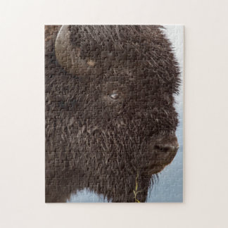 Portrait Of A Bison Bull In The Rain 2 Puzzle
