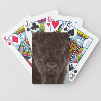 Portrait Of A Bison Bull In The Rain Bicycle Playing Cards