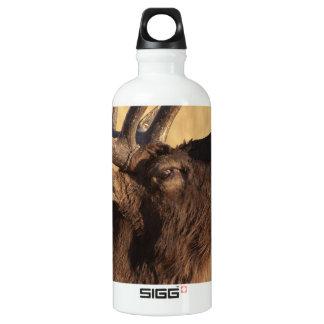 Portrait of a Bugler SIGG Traveller 0.6L Water Bottle