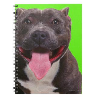 portrait of a bulldog notebooks