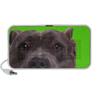 portrait of a bulldog speaker