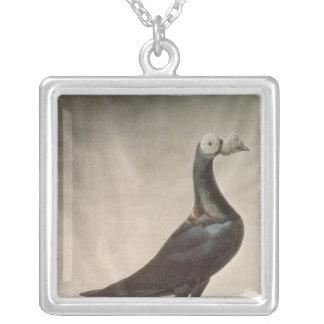 Portrait of a Carrier Pigeon Square Pendant Necklace