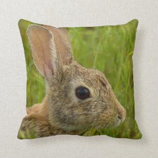 Portrait of a Cottontail Rabbit Cushion