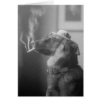 Portrait of a Dog, 1923 Card