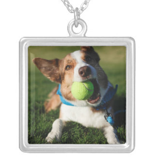 Portrait of a dog, Phoenix, Arizona Silver Plated Necklace